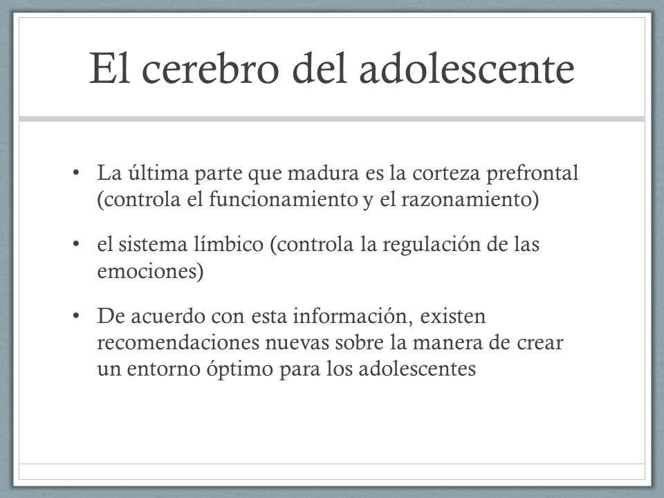 El cerebro del adolescente La última parte que madura es la corteza prefrontal (controla el funcionamiento y el razonamiento) el sistema límbico (cont