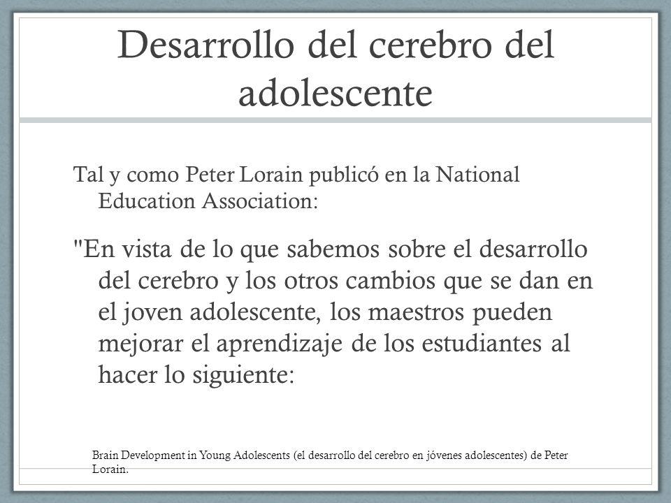 Desarrollo del cerebro del adolescente Tal y como Peter Lorain publicó en la National Education Association: