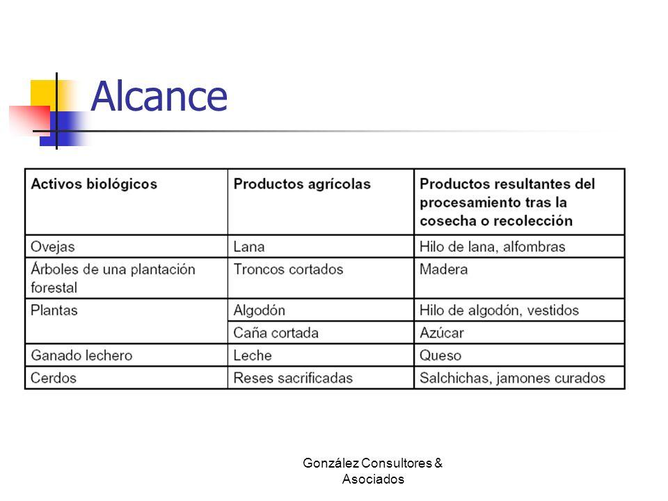 Alcance González Consultores & Asociados