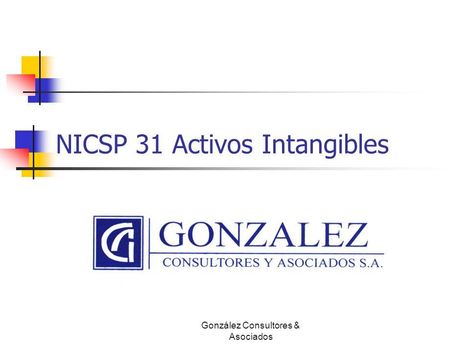 NICSP 31 Activos Intangibles Luis Diego León B, CPA, CISA González Consultores & Asociados
