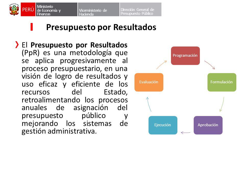 Dirección General de Presupuesto Público Presupuesto por Resultados El Presupuesto por Resultados (PpR) es una metodología que se aplica progresivamen