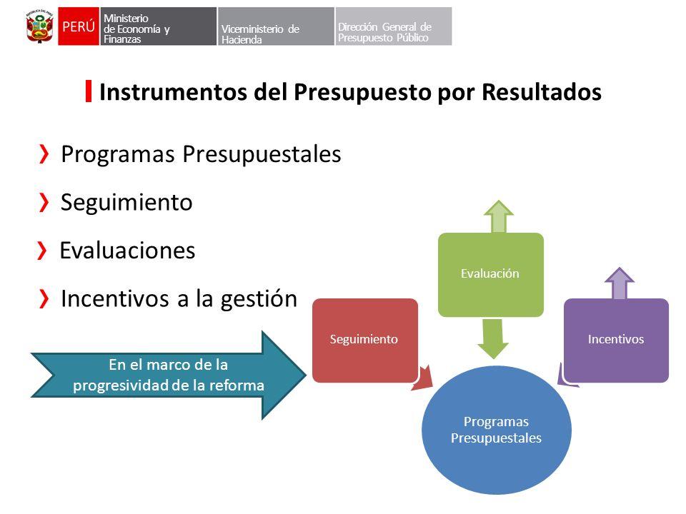 Dirección General de Presupuesto Público Instrumentos del Presupuesto por Resultados Programas Presupuestales Ministerio de Economía y Finanzas Vicemi