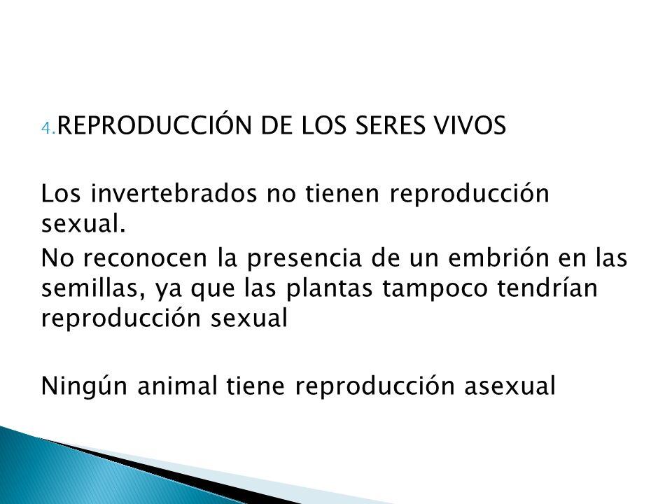 4.REPRODUCCIÓN DE LOS SERES VIVOS Los invertebrados no tienen reproducción sexual.