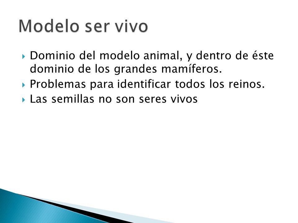 Dominio del modelo animal, y dentro de éste dominio de los grandes mamíferos. Problemas para identificar todos los reinos. Las semillas no son seres v