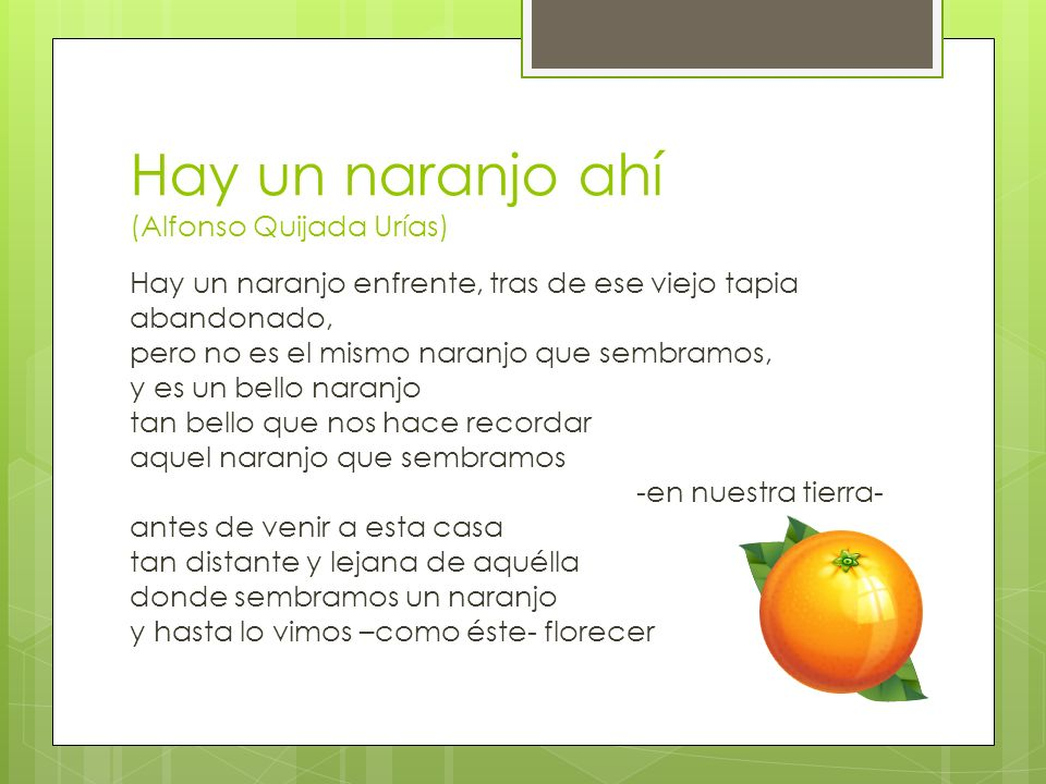 Hay un naranjo ahí (Alfonso Quijada Urías) Hay un naranjo enfrente, tras de ese viejo tapia abandonado, pero no es el mismo naranjo que sembramos, y e