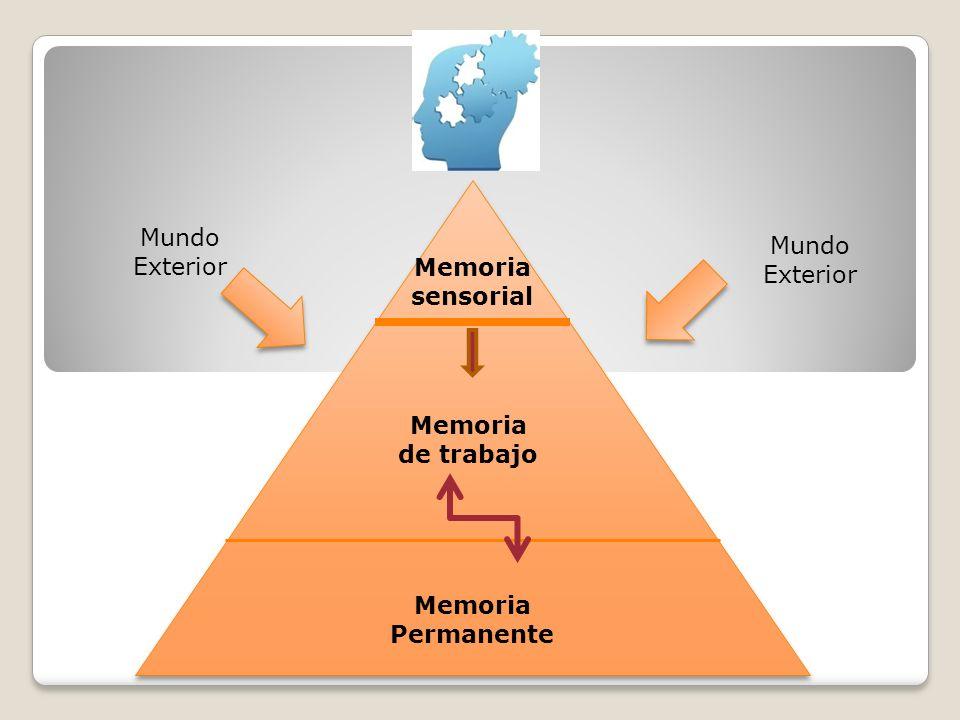 Memoria sensorial Memoria de trabajo Memoria Permanente Mundo Exterior