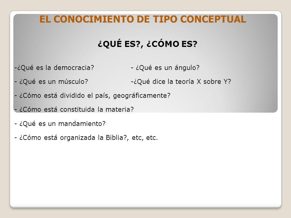 EL CONOCIMIENTO DE TIPO CONCEPTUAL ¿QUÉ ES?, ¿CÓMO ES.