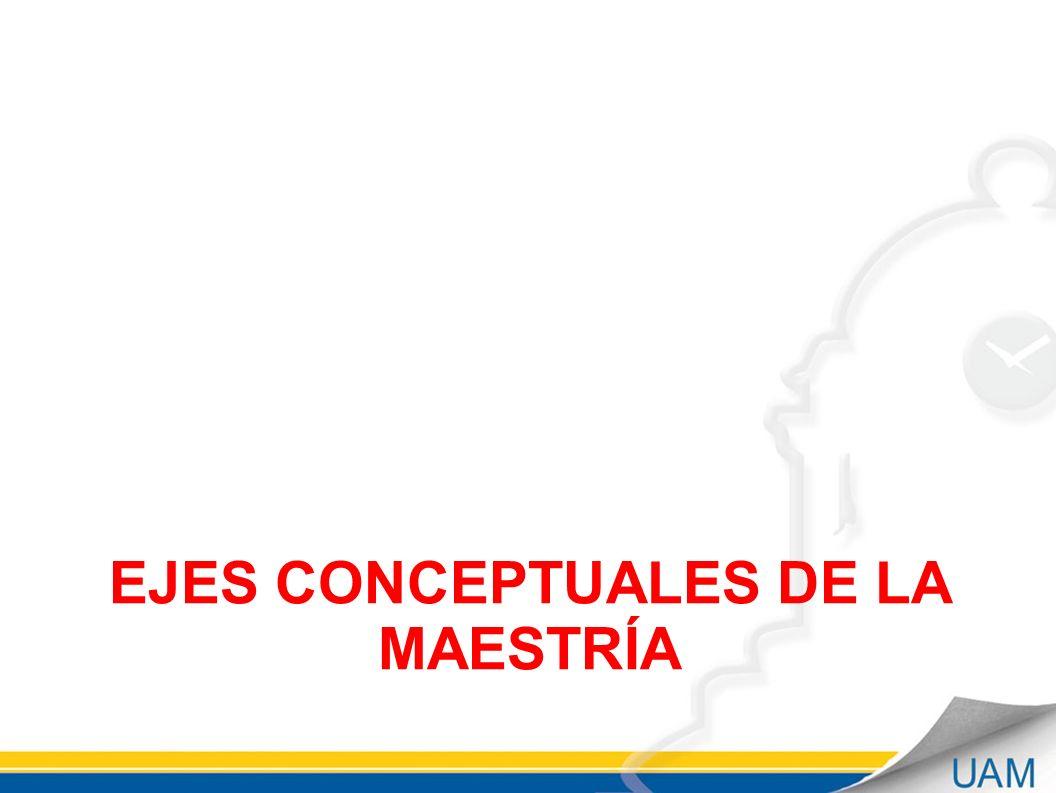 EJES CONCEPTUALES DE LA MAESTRÍA