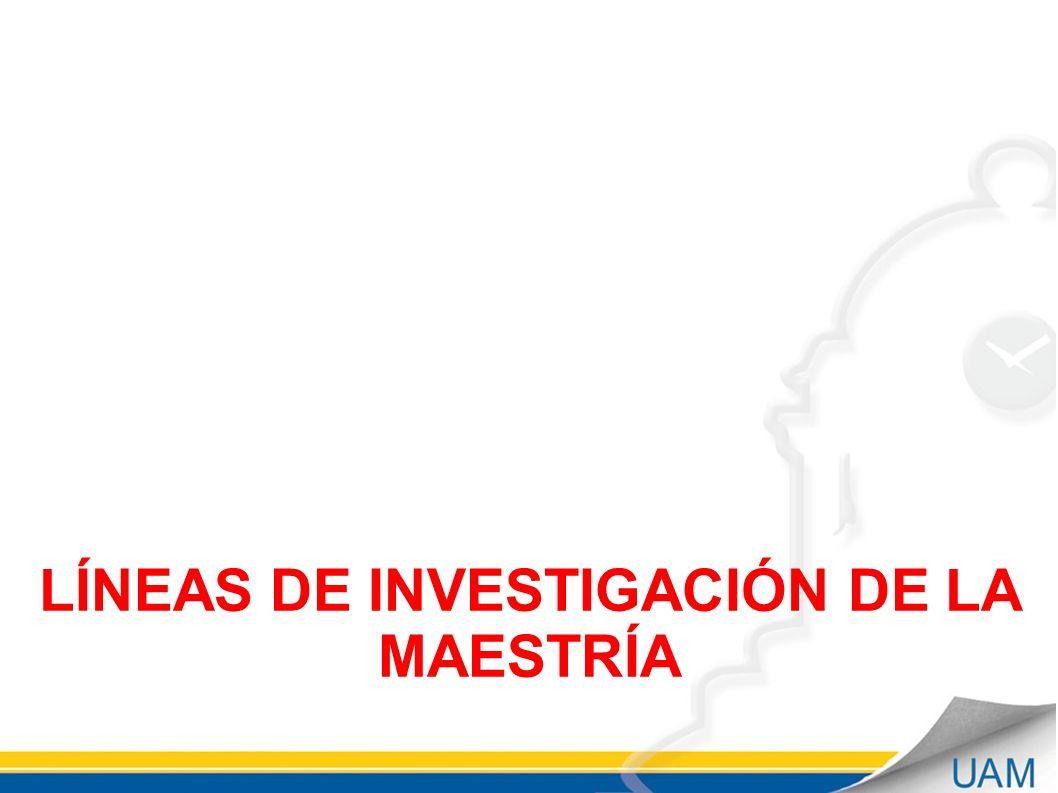 LÍNEAS DE INVESTIGACIÓN DE LA MAESTRÍA