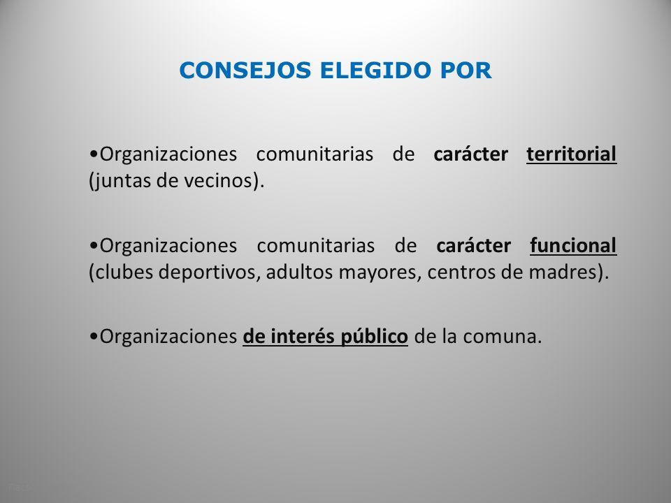 CONSEJOS ELEGIDO POR Organizaciones comunitarias de carácter territorial (juntas de vecinos). Organizaciones comunitarias de carácter funcional (clube