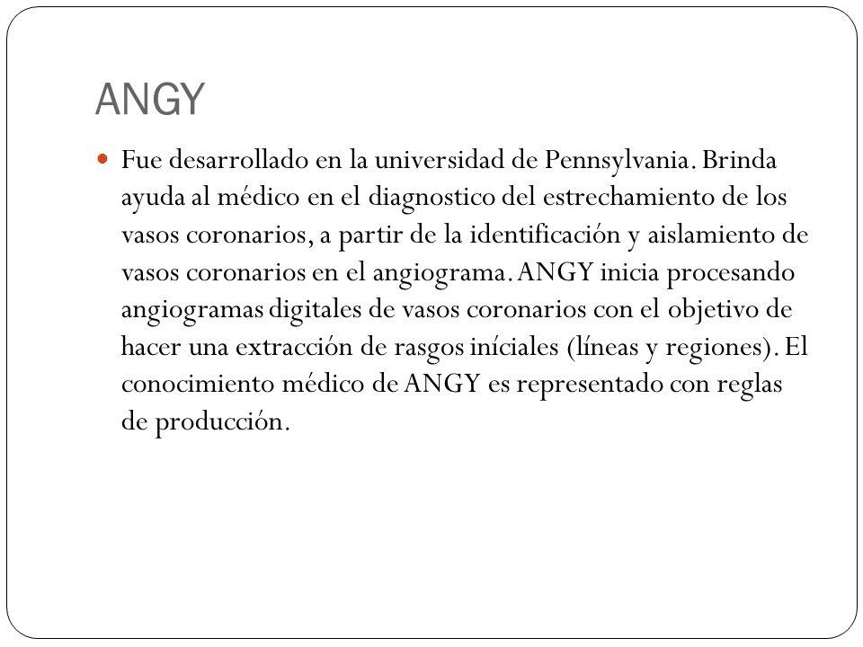 ANGY Fue desarrollado en la universidad de Pennsylvania. Brinda ayuda al médico en el diagnostico del estrechamiento de los vasos coronarios, a partir