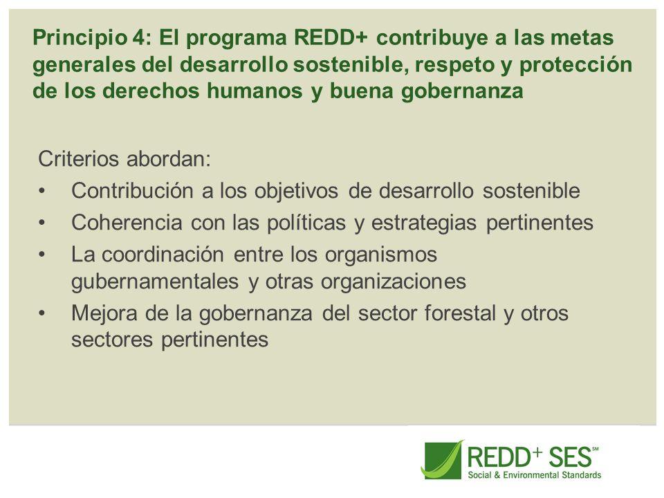 Principio 4: El programa REDD+ contribuye a las metas generales del desarrollo sostenible, respeto y protección de los derechos humanos y buena gobern