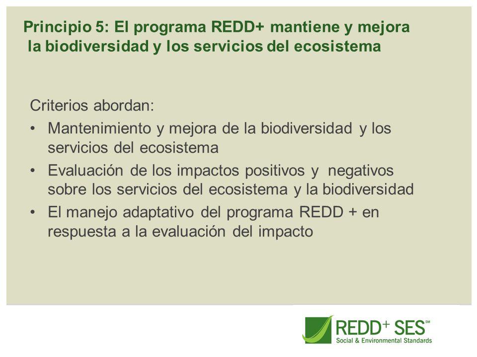 Principio 5: El programa REDD+ mantiene y mejora la biodiversidad y los servicios del ecosistema Criterios abordan: Mantenimiento y mejora de la biodi