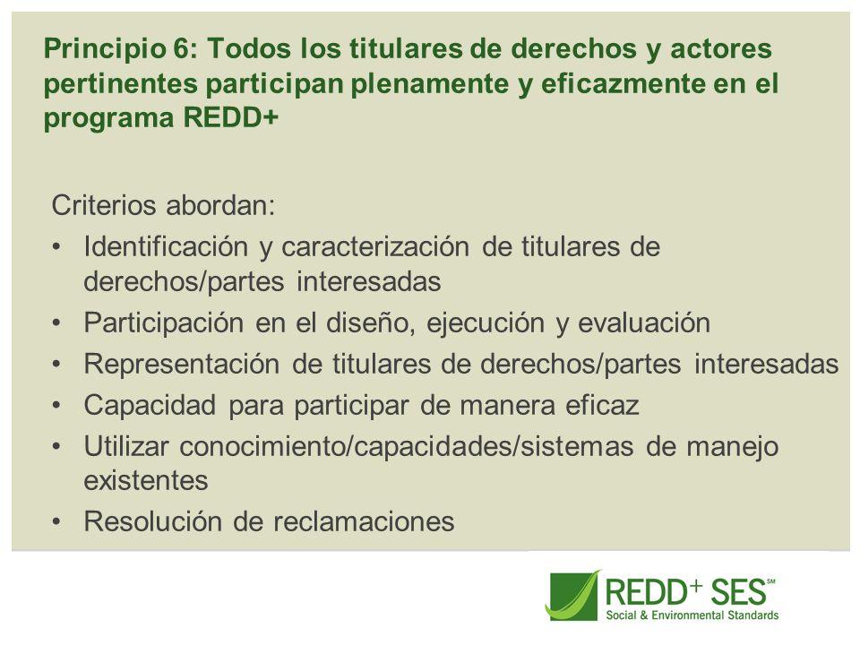 Principio 6: Todos los titulares de derechos y actores pertinentes participan plenamente y eficazmente en el programa REDD+ Criterios abordan: Identif