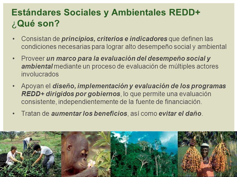 Estándares Sociales y Ambientales REDD+ ¿Qué son? Consistan de principios, criterios e indicadores que definen las condiciones necesarias para lograr