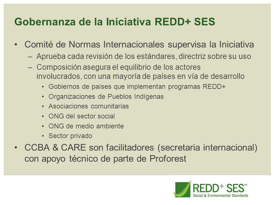 Gobernanza de la Iniciativa REDD+ SES Comité de Normas Internacionales supervisa la Iniciativa –Aprueba cada revisión de los estándares, directriz sob