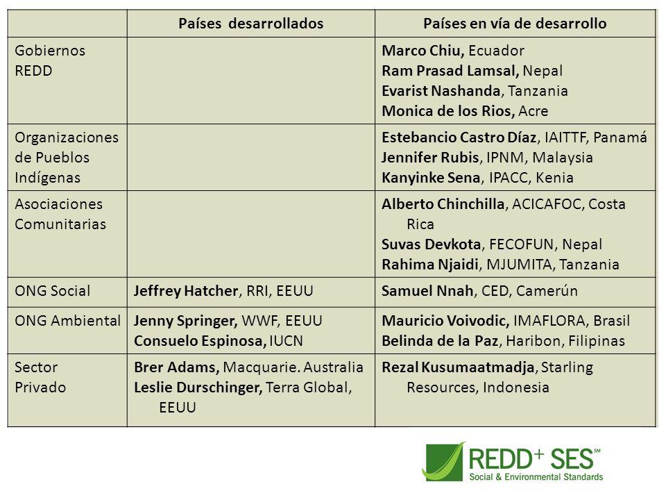 Países desarrolladosPaíses en vía de desarrollo Gobiernos REDD Marco Chiu, Ecuador Ram Prasad Lamsal, Nepal Evarist Nashanda, Tanzania Monica de los R