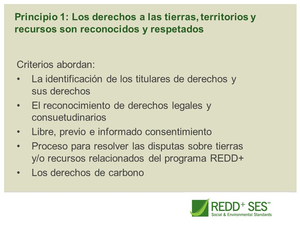 Para más información: Joanna Durbin Director Climate, Community & Biodiversity Alliance jdurbin@climate-standards.org Phil Franks Global Coordinator CARE Poverty, Environment and Climate Change Network pfranks@careclimatechange.org www.REDD-standards.org