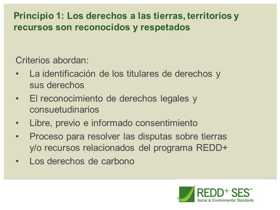Principio 1: Los derechos a las tierras, territorios y recursos son reconocidos y respetados Criterios abordan: La identificación de los titulares de
