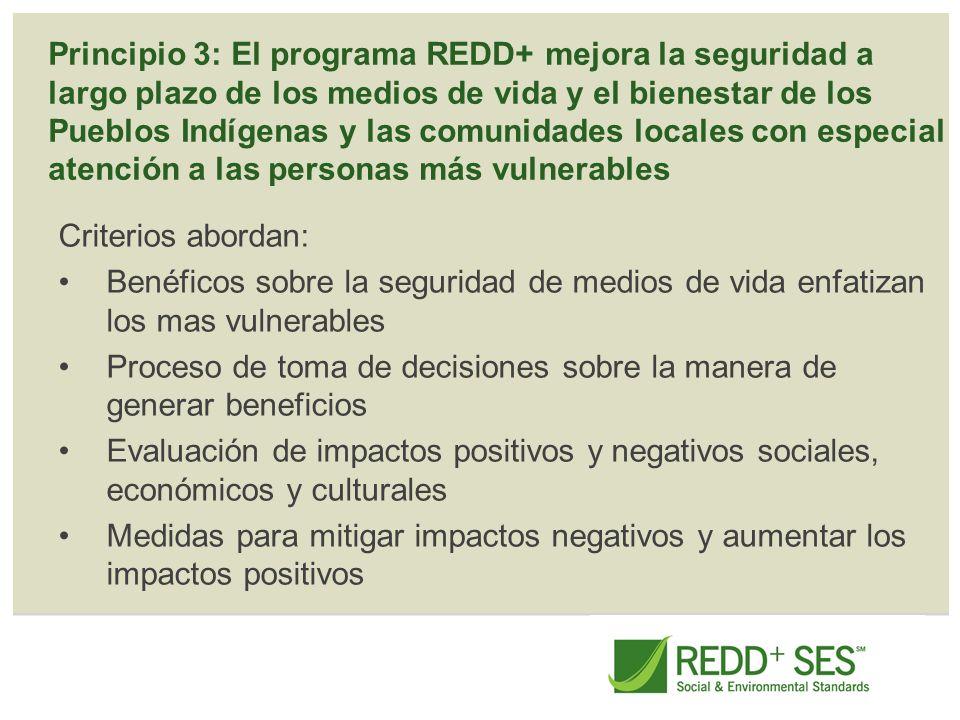 Principio 4: El programa REDD+ contribuye a las metas generales del desarrollo sostenible, respeto y protección de los derechos humanos y buena gobernanza Criterios abordan: Contribución a los objetivos de desarrollo sostenible Coherencia con las políticas y estrategias pertinentes La coordinación entre los organismos gubernamentales y otras organizaciones Mejora de la gobernanza del sector forestal y otros sectores pertinentes