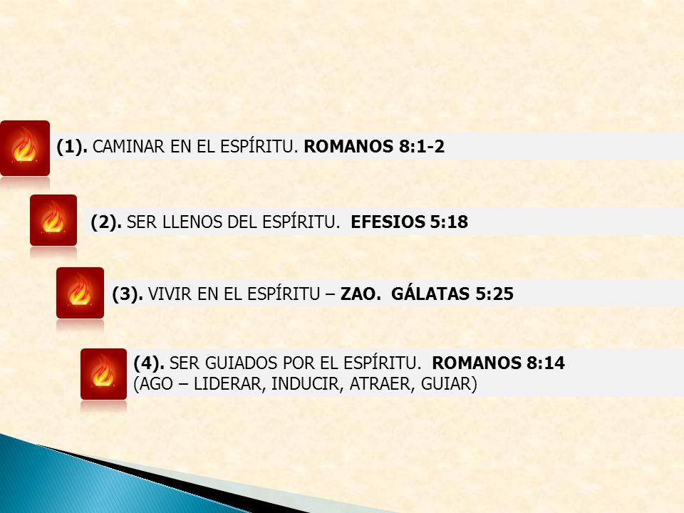(2). SER LLENOS DEL ESPÍRITU. EFESIOS 5:18 (3). VIVIR EN EL ESPÍRITU – ZAO. GÁLATAS 5:25 (4). SER GUIADOS POR EL ESPÍRITU. ROMANOS 8:14 (AGO – LIDERAR
