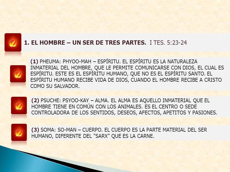 1. EL HOMBRE – UN SER DE TRES PARTES. I TES. 5:23-24 (1) PHEUMA: PHYOO-MAH – ESPÍRITU. EL ESPÍRITU ES LA NATURALEZA INMATERIAL DEL HOMBRE, QUE LE PERM