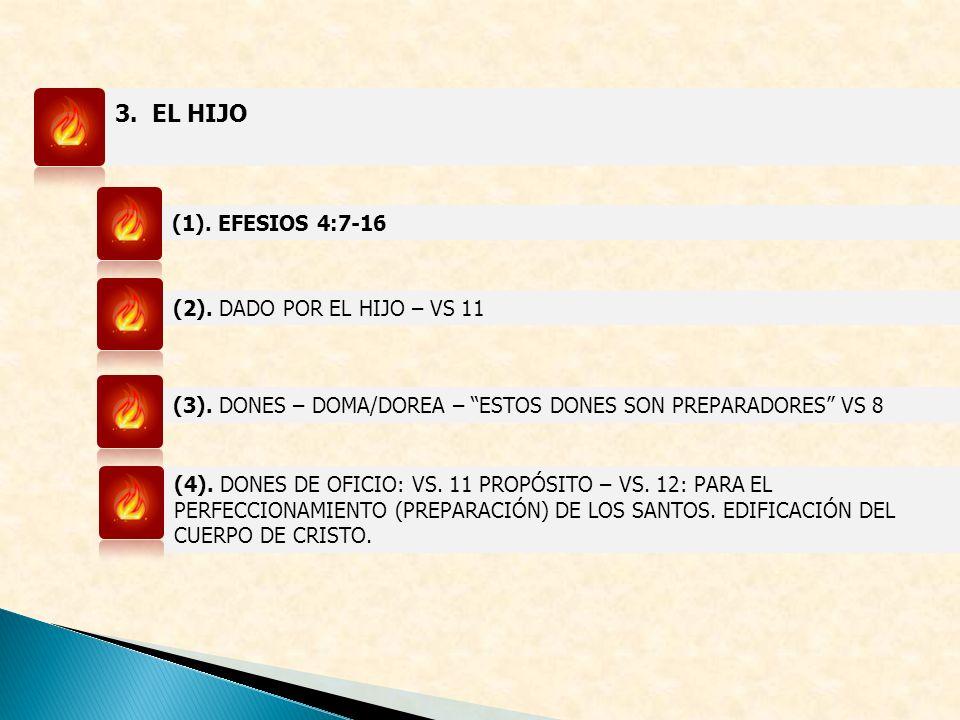3. EL HIJO (1). EFESIOS 4:7-16 (2). DADO POR EL HIJO – VS 11 (3). DONES – DOMA/DOREA – ESTOS DONES SON PREPARADORES VS 8 (4). DONES DE OFICIO: VS. 11