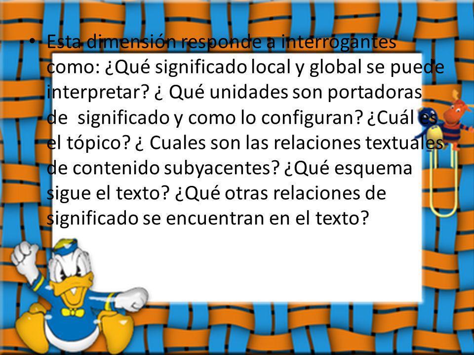 Esta dimensión responde a interrogantes como: ¿Qué significado local y global se puede interpretar? ¿ Qué unidades son portadoras de significado y com