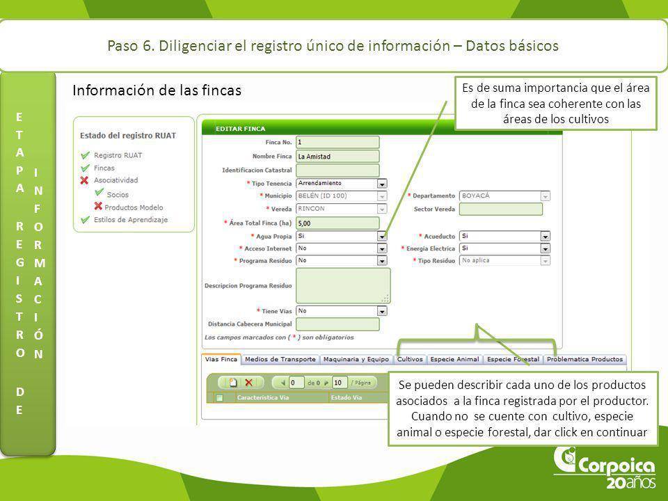 Paso 6. Diligenciar el registro único de información – Datos básicos Información de las fincas Es de suma importancia que el área de la finca sea cohe
