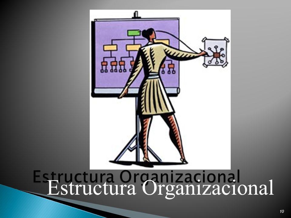 10 Estructura Organizacional