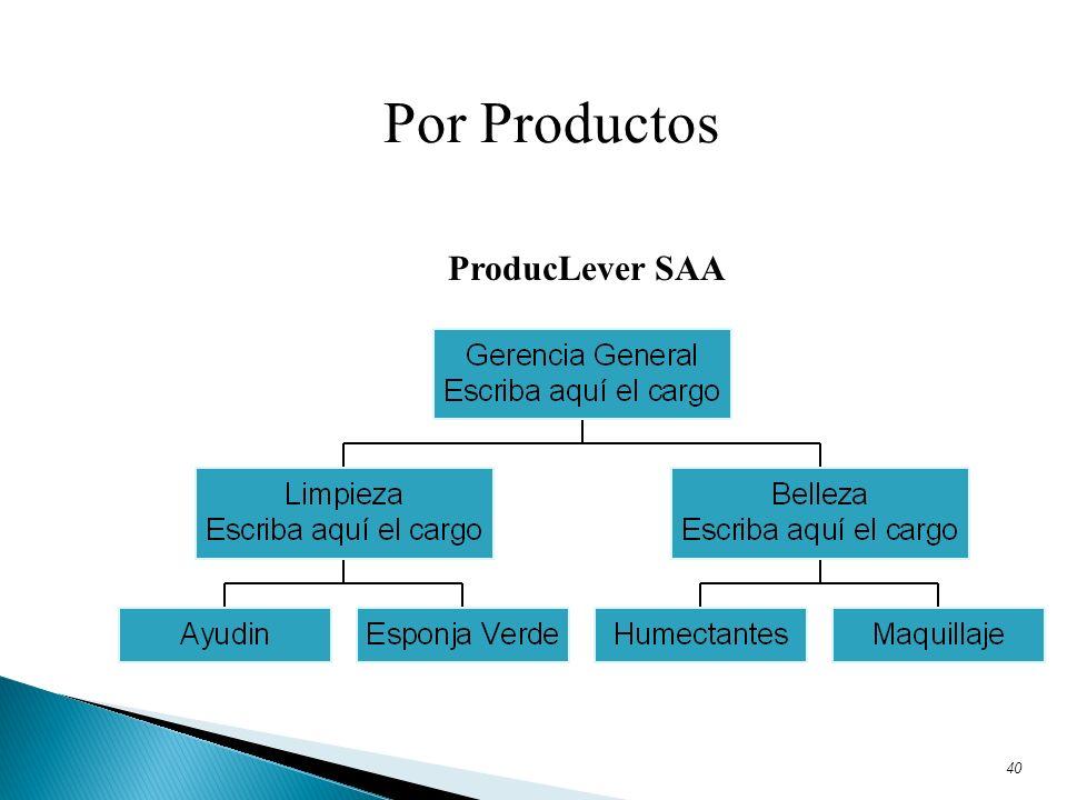 40 Por Productos ProducLever SAA