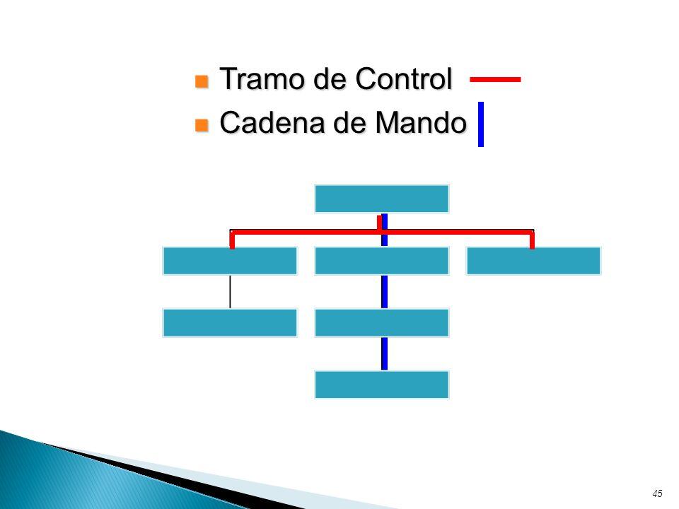 45 Tramo de Control Tramo de Control Cadena de Mando Cadena de Mando