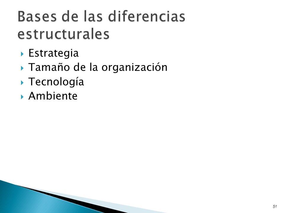 Estrategia Tamaño de la organización Tecnología Ambiente 51