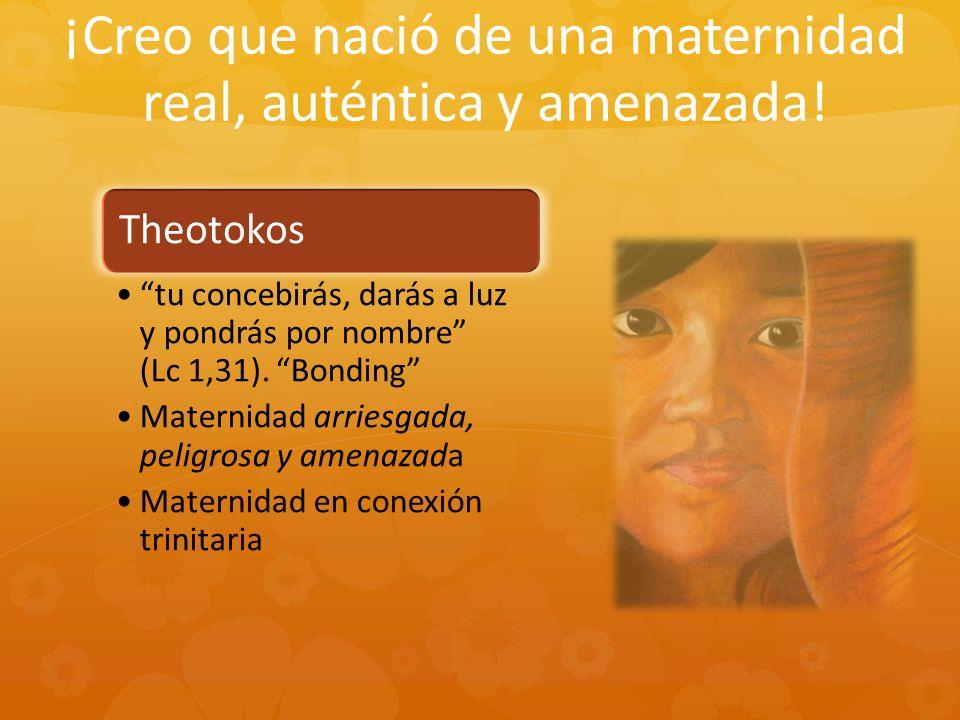¡Creo que nació de una maternidad real, auténtica y amenazada! Theotokos tu concebirás, darás a luz y pondrás por nombre (Lc 1,31). Bonding Maternidad
