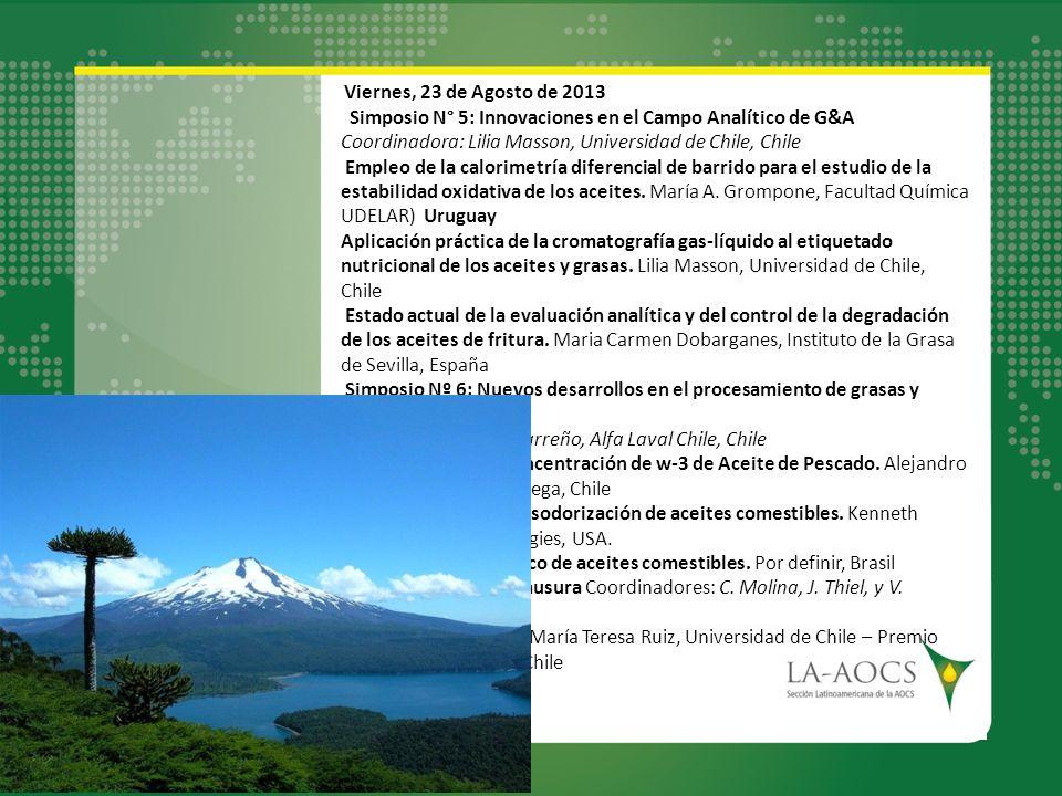 Viernes, 23 de Agosto de 2013 Simposio N° 5: Innovaciones en el Campo Analítico de G&A Coordinadora: Lilia Masson, Universidad de Chile, Chile Empleo