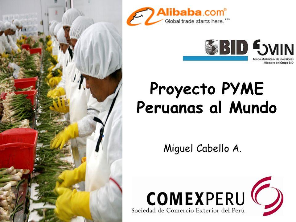 Proyecto PYME Peruanas al Mundo Miguel Cabello A.
