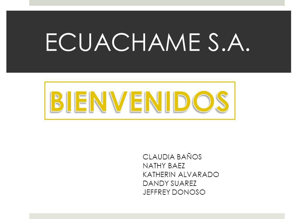 ECUACHAME S.A. CLAUDIA BAÑOS NATHY BAEZ KATHERIN ALVARADO DANDY SUAREZ JEFFREY DONOSO