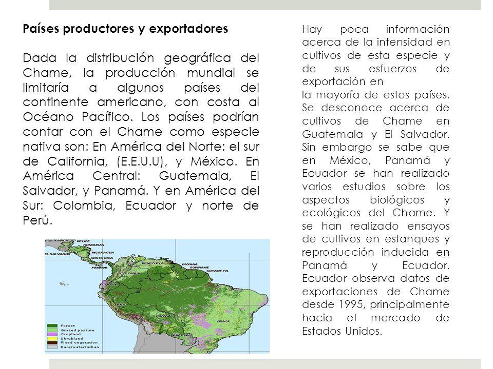 Países productores y exportadores Dada la distribución geográfica del Chame, la producción mundial se limitaría a algunos países del continente americ