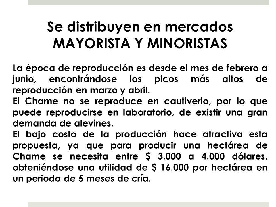 Se distribuyen en mercados MAYORISTA Y MINORISTAS La época de reproducción es desde el mes de febrero a junio, encontrándose los picos más altos de re
