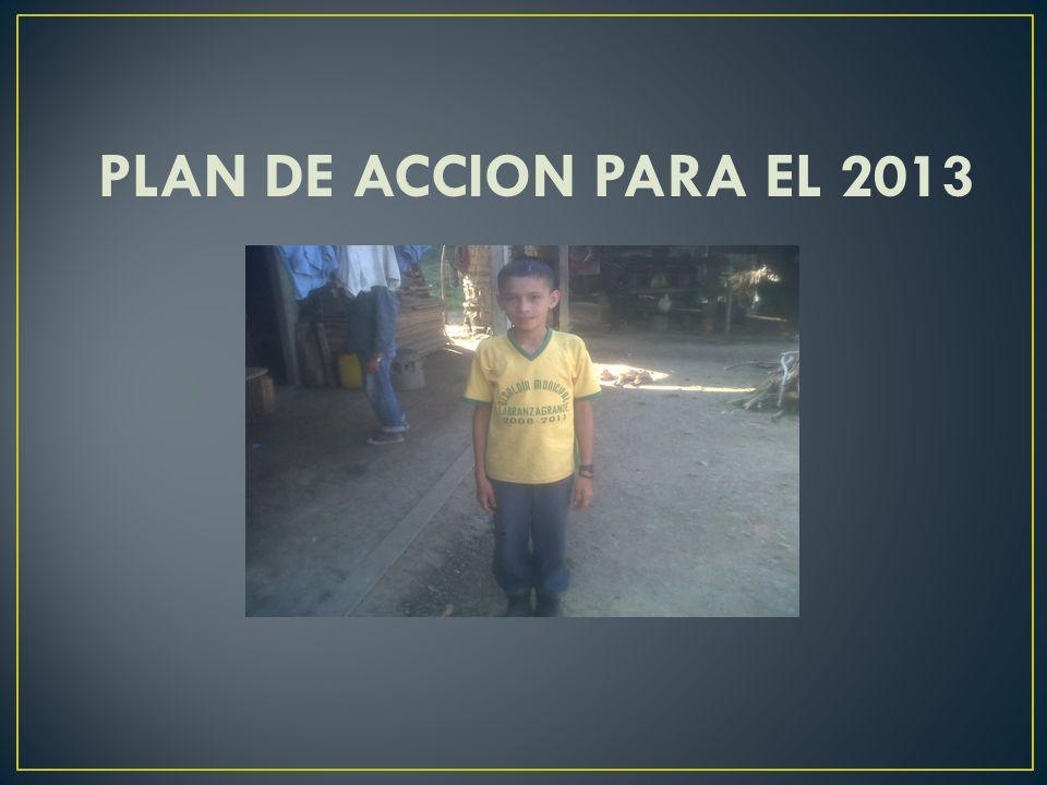 PLAN DE ACCION PARA EL 2013