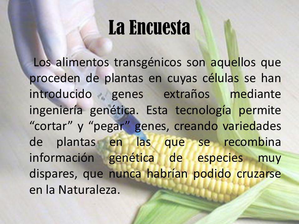 La Encuesta Los alimentos transgénicos son aquellos que proceden de plantas en cuyas células se han introducido genes extraños mediante ingeniería genética.