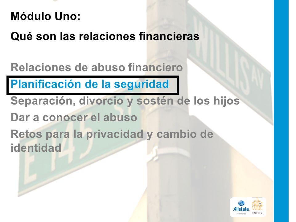 Módulo Uno: Qué son las relaciones financieras Relaciones de abuso financiero Planificación de la seguridad Separación, divorcio y sostén de los hijos Dar a conocer el abuso Retos para la privacidad y cambio de identidad