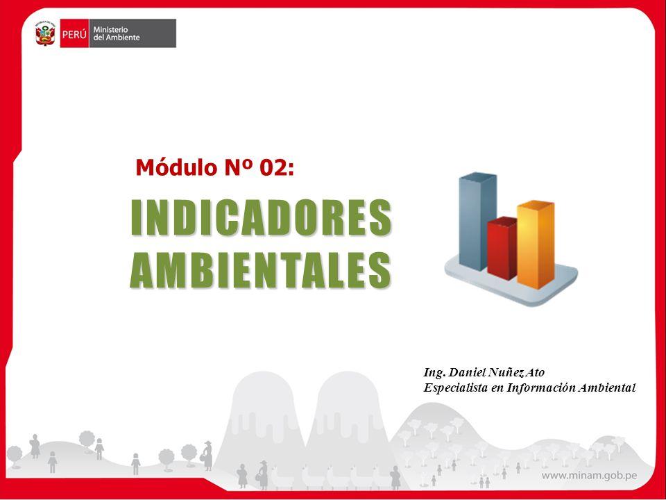 INDICADORESAMBIENTALES Módulo Nº 02: Ing. Daniel Nuñez Ato Especialista en Información Ambiental