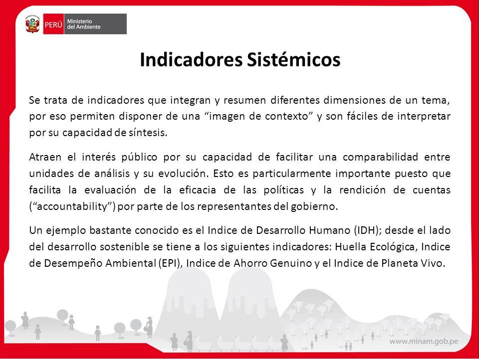 Indicadores Sistémicos Se trata de indicadores que integran y resumen diferentes dimensiones de un tema, por eso permiten disponer de una imagen de co