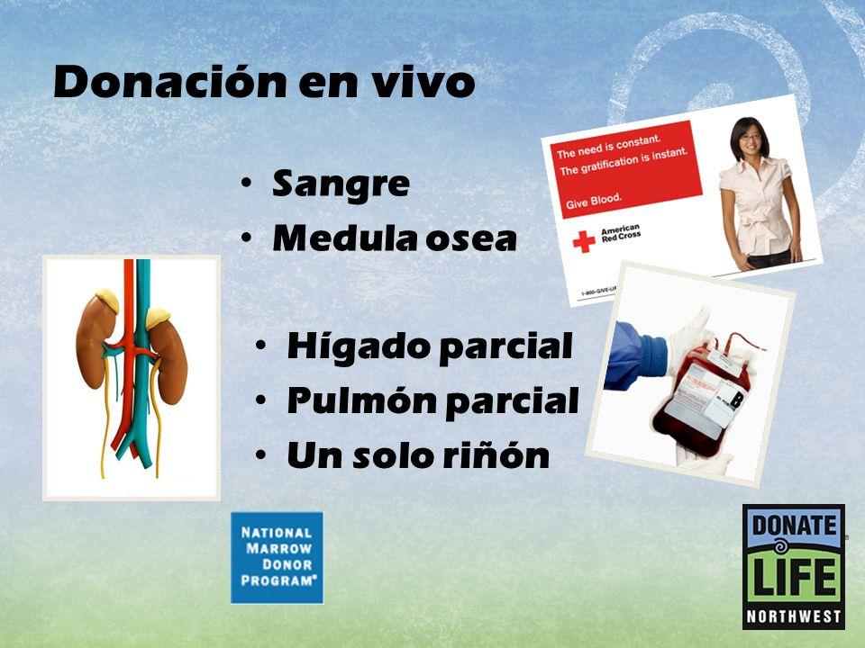 Donación en vivo Hígado parcial Pulmón parcial Un solo riñón Sangre Medula osea