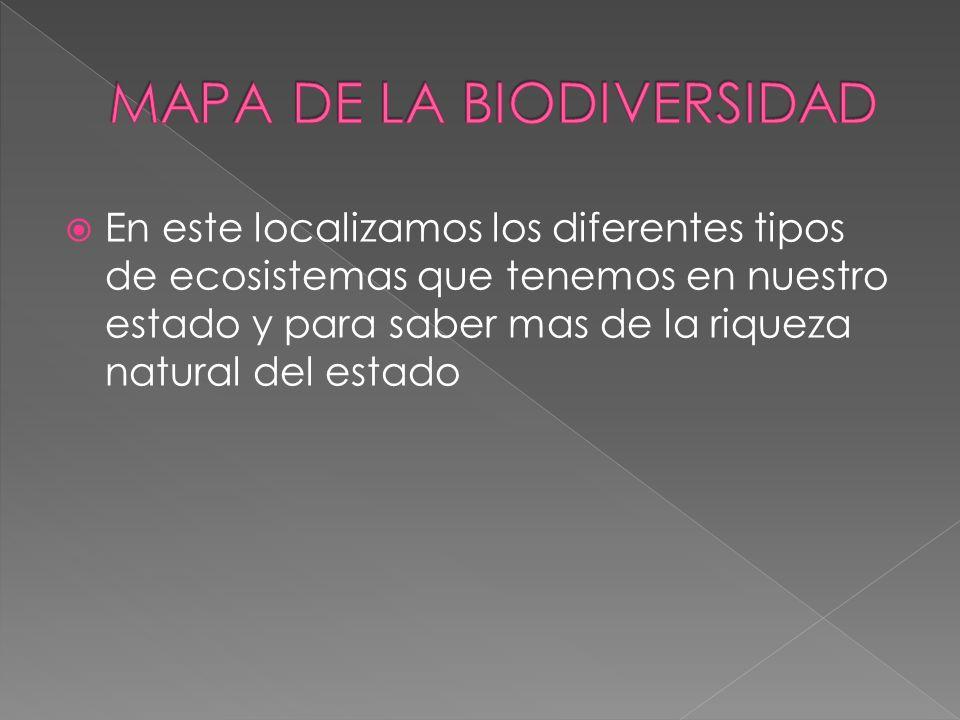 En este localizamos los diferentes tipos de ecosistemas que tenemos en nuestro estado y para saber mas de la riqueza natural del estado