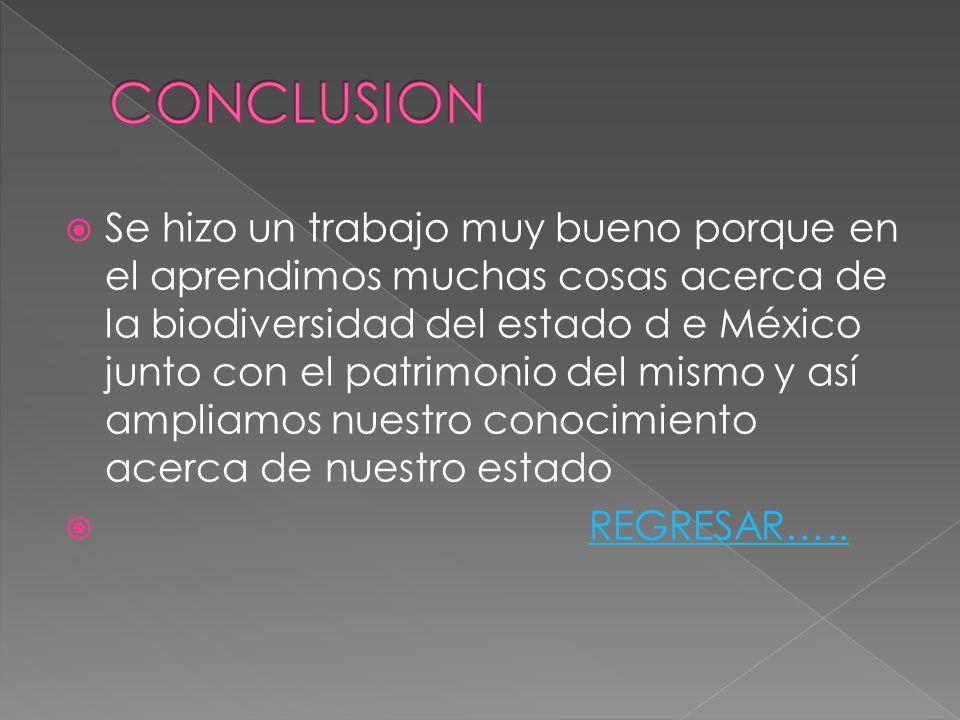 Se hizo un trabajo muy bueno porque en el aprendimos muchas cosas acerca de la biodiversidad del estado d e México junto con el patrimonio del mismo y