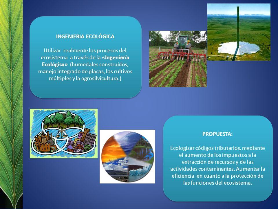 INGENIERIA ECOLÓGICA Utilizar realmente los procesos del ecosistema a través de la «Ingeniería Ecológica» (humedales construidos, manejo integrado de placas, los cultivos múltiples y la agrosilvicultura.) INGENIERIA ECOLÓGICA Utilizar realmente los procesos del ecosistema a través de la «Ingeniería Ecológica» (humedales construidos, manejo integrado de placas, los cultivos múltiples y la agrosilvicultura.) PROPUESTA: Ecologizar códigos tributarios, mediante el aumento de los impuestos a la extracción de recursos y de las actividades contaminantes.