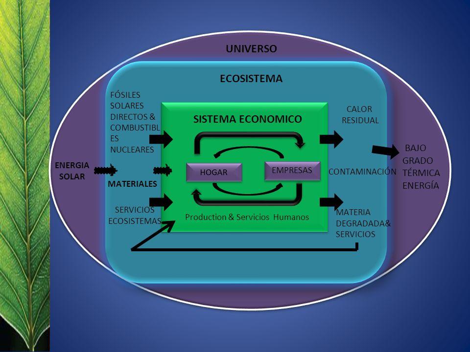 EMPRESAS UNIVERSO ECOSISTEMA SISTEMA ECONOMICO Production & Servicios Humanos ENERGIA SOLAR FÓSILES SOLARES DIRECTOS & COMBUSTIBL ES NUCLEARES SERVICIOS ECOSISTEMAS CONTAMINACIÓN MATERIA DEGRADADA& SERVICIOS BAJO GRADO TÉRMICA ENERGÍA MATERIALES CALOR RESIDUAL