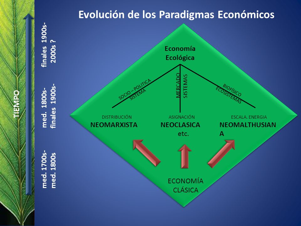 Economía Ecológica SOCIO – POLITICA SISTEMA BIOFÍSICO ECOSISTEMAS MERCADO SISTEMAS ASIGNACIÓN NEOCLASICA etc. DISTRIBUCIÓN NEOMARXISTA ESCALA. ENERGIA